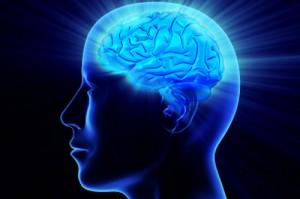 Cara Meningkatkan Kecerdasan Otak Melalui Belajar Bahasa Asing