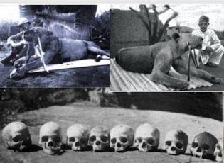 Foto Singa Ghost and Darkness oleh unik segiempat
